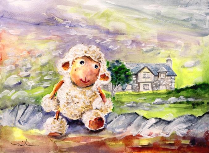 Mary The Scottish Sheep S